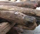 深圳奥氏黄檀原木|板材|木方进口清关商检