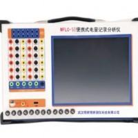 武汉WFLC-Ⅵ电量记录分析仪