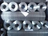 衡水优质低碳钢丝电焊网 金豪丝网