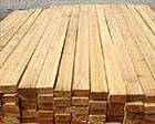 马来西亚木材进口-香港-广东-南沙港到门物流服务进出口代理
