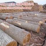 广州上海木材进口报关流程是怎样的|原木|板材|木方|木材进口报关流程