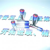 威能供应12V23A、12V27柱式电池