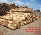 广州进口非洲刺猬紫檀-非洲花梨木进口证件有错误,应该如何解决,怎么办
