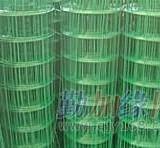 衡水镀锌电焊网