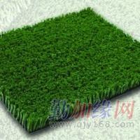 运动人造草
