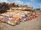 深圳澳大利亚桤木进口清关代理|木材原木报检|深圳进口报关公司