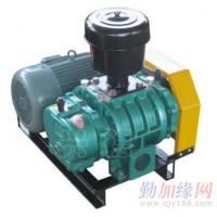 SR80-I型罗茨式增氧泵