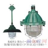 温州GC11系列防水防尘灯,防水防腐灯具