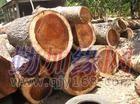 东莞 黄檀木进口清关要多久|沙田港代理木材进口报关