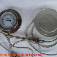供应压力式温度表 WTZWTQ压力式温度表