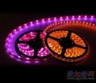 深圳LED软硬灯条 筒灯 天花灯 面板灯 射灯 球泡灯 日光灯 灯杯 柜珠宝灯
