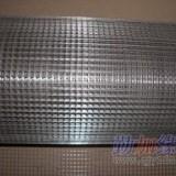衡水黑丝电焊网片/黑丝电焊网/黑丝电焊网厂