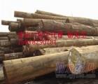 东莞提供美国鹅掌楸木进口报关代理公司/专业木材进口报关代理