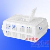 塑料鸡笼运输鸡笼广西塑料鸡笼