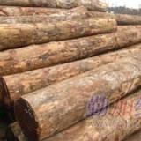 东莞寻求北美原木进口报关代理,木方进口报关代理,原木进口报关代