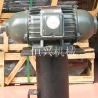 台湾立式2.2kw两工位马达抛光机