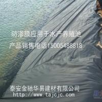 0.3mm防渗膜(土工膜)