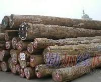 黄埔港黄埔港进口木材黄埔港木材报关代
