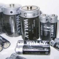 一次性干电池,AA/AAA/D型干电池