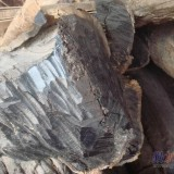 上海市上海最专业的原木清关公司代理进口非洲酸枝