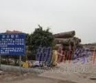 深圳红木家具进口|盐田蛇口红木进口报关公司|红木进口费用