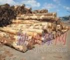 深圳耶希亚木进口清关|深圳木材进口报关代理|原木报检单证|流程