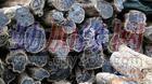 深圳东非黑黄檀木材进口清关代理|深圳盐田木材进口代理|东莞沙田木材进口代理