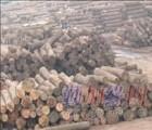 深圳泰国木材进口报关代理 ,老挝木材进口报关代理