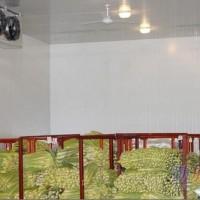 福州葡萄冷库,保鲜冷库,苹果冷库,香蕉冷库,蘑菇冷库,板栗冷库