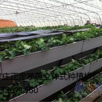 正定供应大棚草莓立体种植槽13032671560