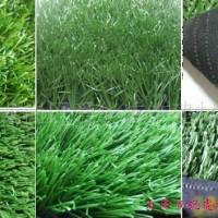 天津销售人造草坪厂家