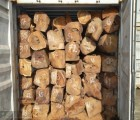 中山红檀香进口代理清关|广州香脂木豆报关手续
