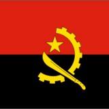 宁波专业办理安哥拉货物跟踪单