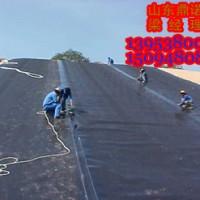 高密度聚乙烯防渗膜,HDPE土工膜销售热线!