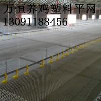 高密度聚乙烯塑料平网 PE绿色塑料平网 塑料平网网片