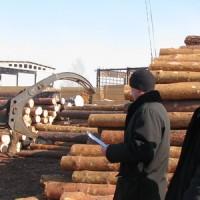 深圳木材进口手续代理