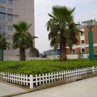 北京塑钢护栏 北京PVC塑钢护栏 PVC草坪园艺塑钢护栏