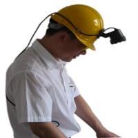 头盔式紫外灯,LH-10黑光灯