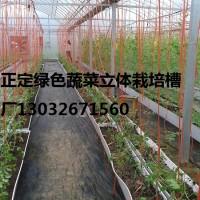 正定供应果蔬立体式种植栽培槽