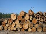 上海港橡胶木进口报关手续服务