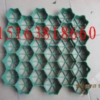 江西植草格有限公司¥¥15163818660