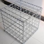 包塑石笼网/康光丝网