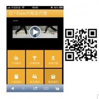 广州专业网站建设|手机网站开发制作