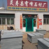 河北万年青生产厂家