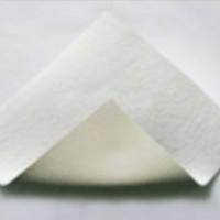 PVC土工膜专业生产