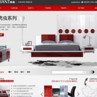 深圳天诺网络 网页设计,网站优化,网站管理,网页推广