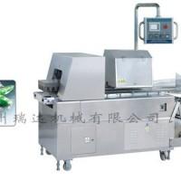 沧州DXD-620蔬菜枕式包装机