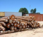 东莞小叶紫檀进口清关有哪些手续|盐田港木材代理进口报关