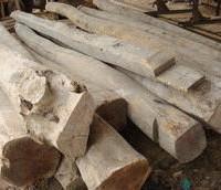 辐射原木进口报关代理