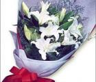 西安西安11朵玫瑰花多少钱呢?西安11支玫瑰鲜花特价?西安鲜花订
